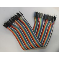 40Pin Connector Ribbon Cable - FF
