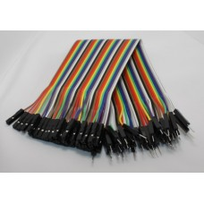 40Pin Connector Ribbon Cable - MF