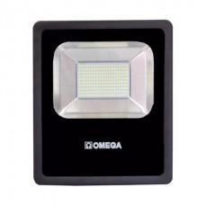 LED Flood Light - 100W - 220VAC